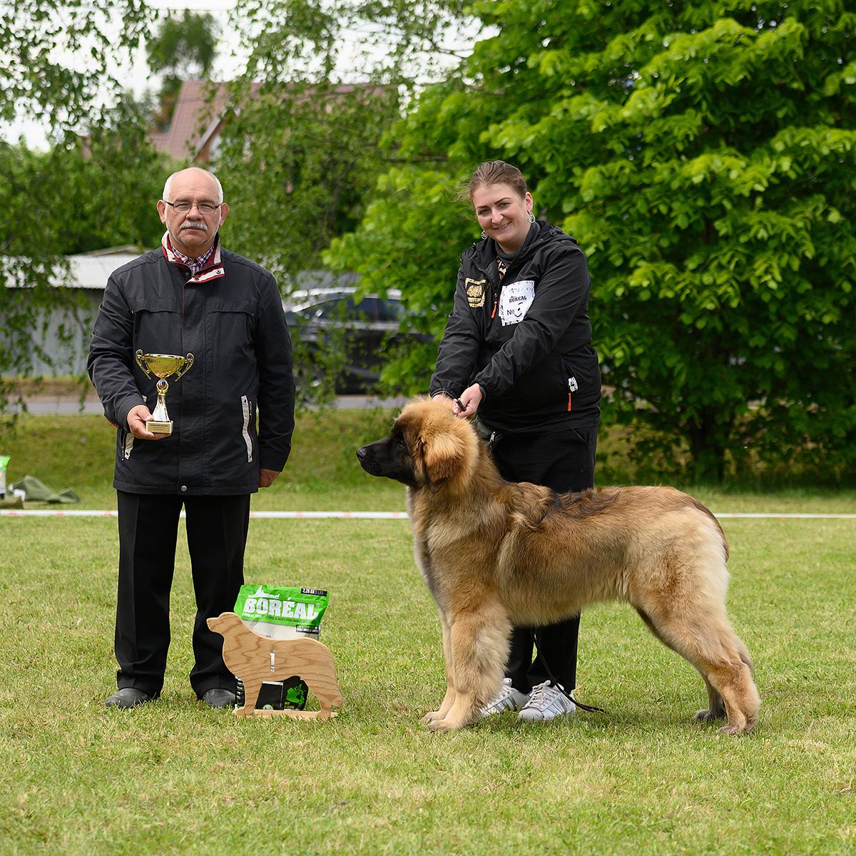 Best Puppy - Laurus Leo vom Zarendorf